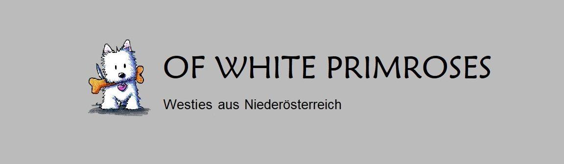 """Herzlich Willkommen auf der Homepage """"Of White Primroses""""!"""